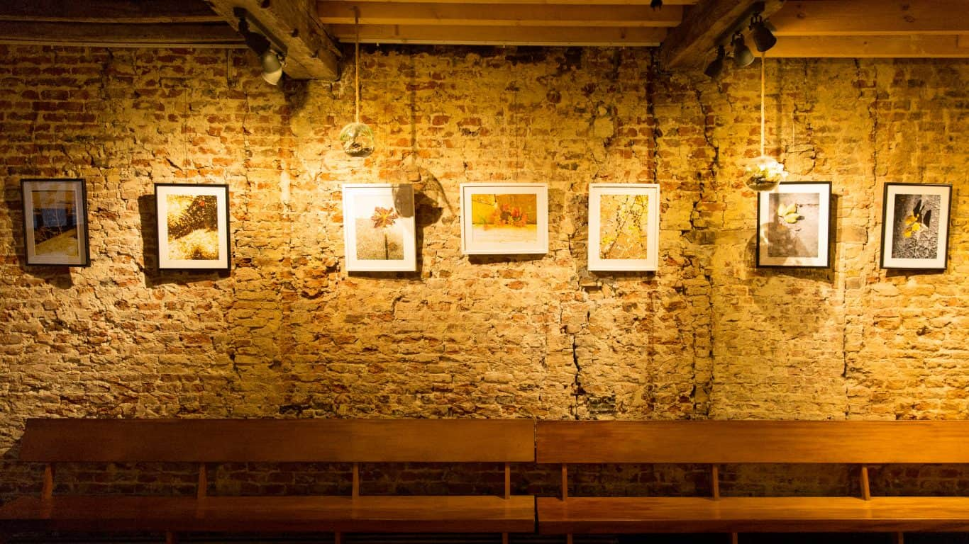 Exhibtions at The Sister Brussels Café